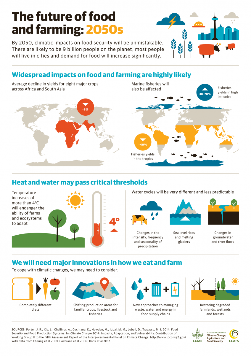 Image Result For Food Security And Climate Change Infographic Agriculture Education Essay On