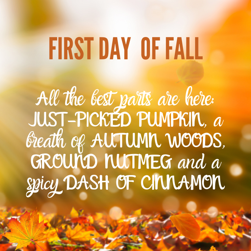 First Day Of Fall 2020.Scentsy Fall Winter 2019 2020 Complete Scent List Scentsy