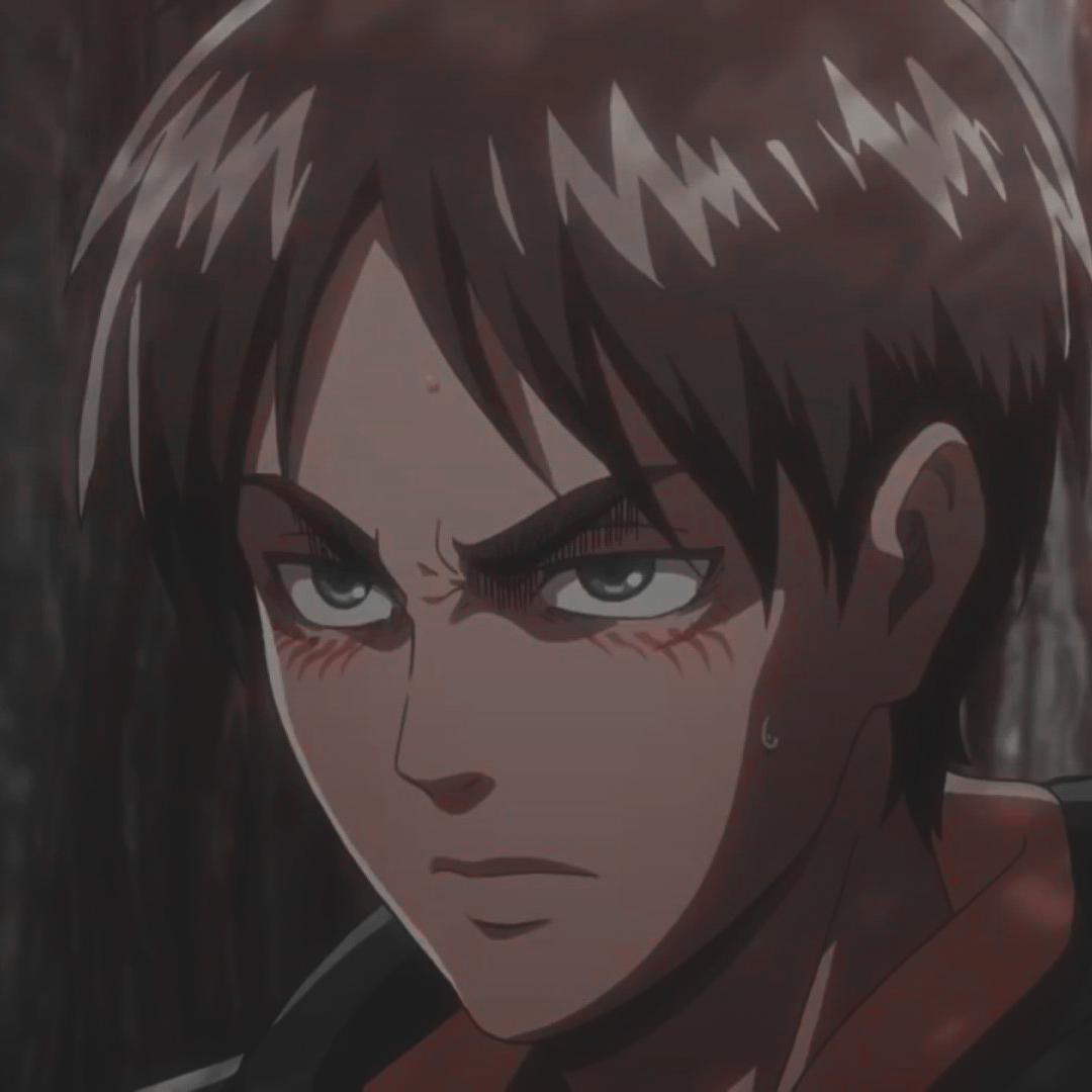 Eren Jaeger icon | Attack on titan aesthetic, Attack on titan anime, Attack  on titan eren