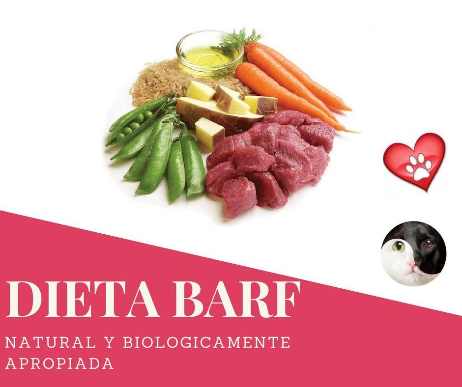 Descarga Gratis El Libro De La Dieta Barf Acba Clic En El Link