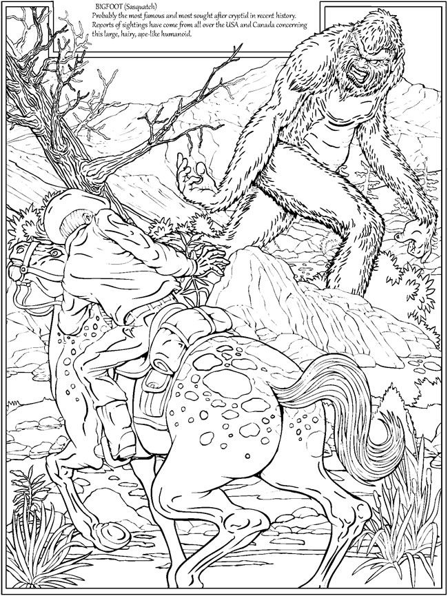 Coloring Book Bigfoot 640 Bigfoot Coloring Books