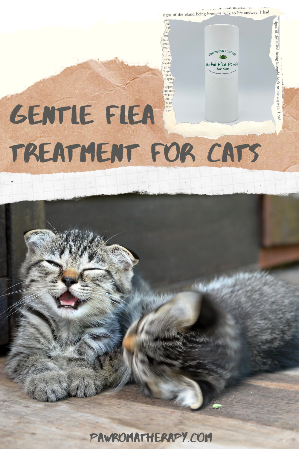 Natural Herbal Flea Powder For Cats Natural Flea Prevention Etsy In 2020 Flea Powder For Cats Flea Powder Cat Fleas