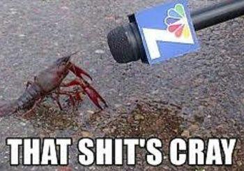 4fb2f8adba5638580cc8abbf1b96eb69 that shit's cray funny crawfish cajun meme louisiana cajun life
