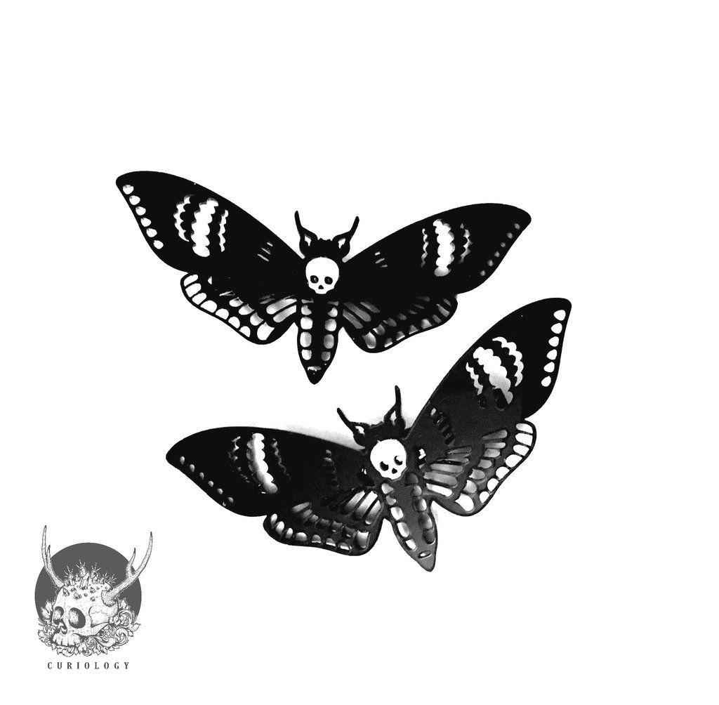 Deaths Head Moth Hair Clips Material Acrylic With Metal