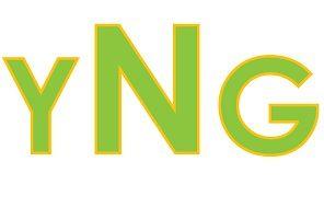 yNg - yourNETgeek