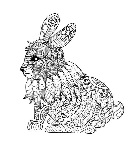 Amazon.com: Adult Coloring Books: Animals - Stress Relief ...