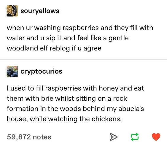 Comfypasta Home Of Comfy Copypasta Tumblr Funny Words Relatable