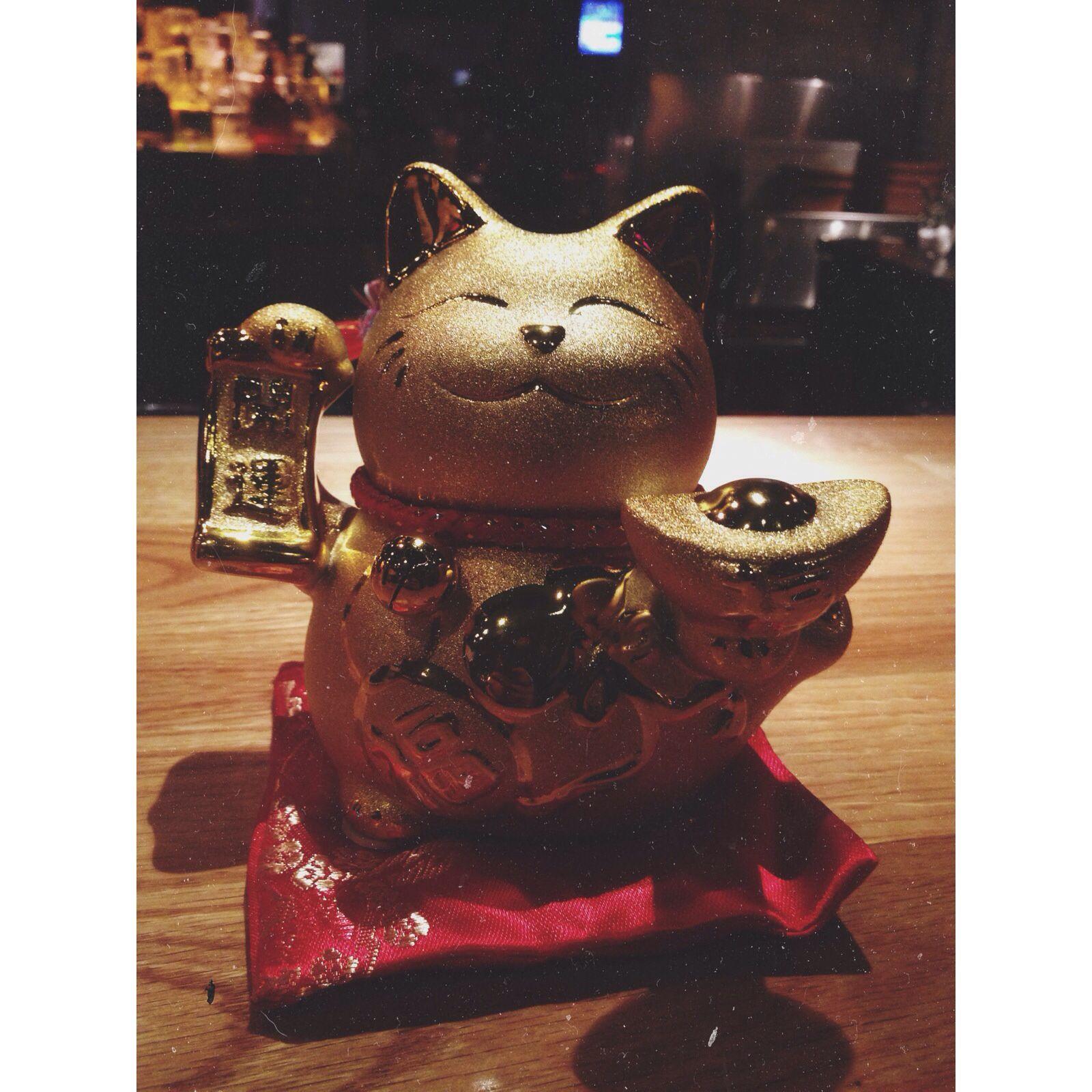 Gold lucky cat