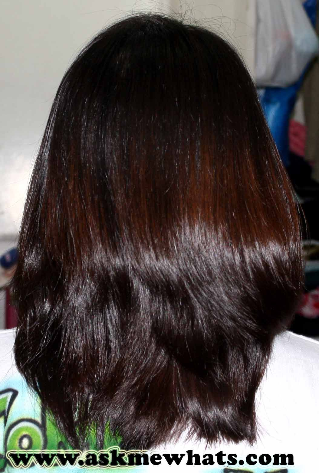 Back View Shoulder Length Layered Haircuts For Thick Hair 29