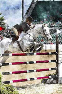 Show Jumping Photograph - Over Easy  by Carrie Cranwill