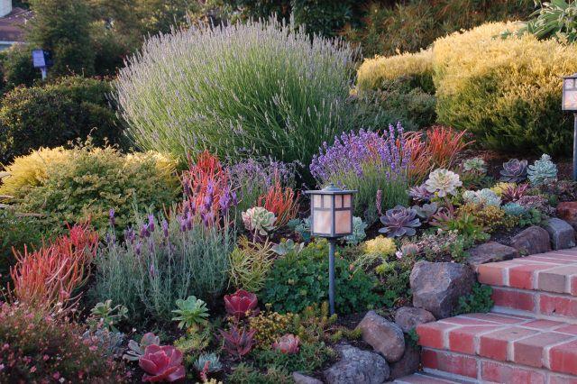 Pin On Garden Glory