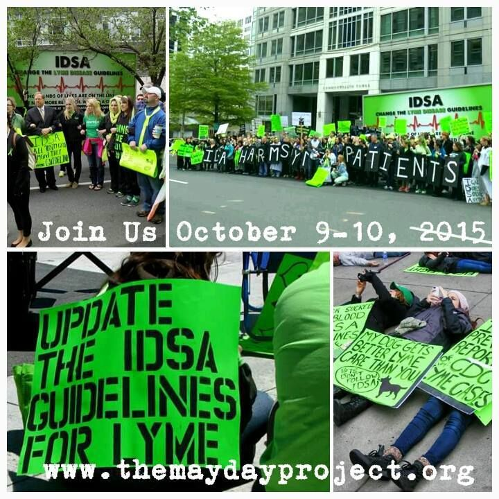 A coalition of Lyme patient advocacy groups will hold rallies and a candlelight vigil on October 9 and 10 during the IDWeek medical conference in San Diego., , , , IDWeek is organized by the Infectious Diseases Society of America (IDSA). IDSA publishes guidelines for diagnosis and treatment of Lyme disease, which are followed by many physicians and used by insurers to determine limits on coverage., ,  , , Since they were first published in 2000, IDSA's guidelines have been the subject of…