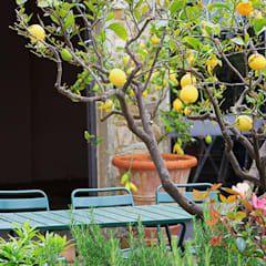 Gartendesign mediterraner garten von phillys interior design mediterran | homify