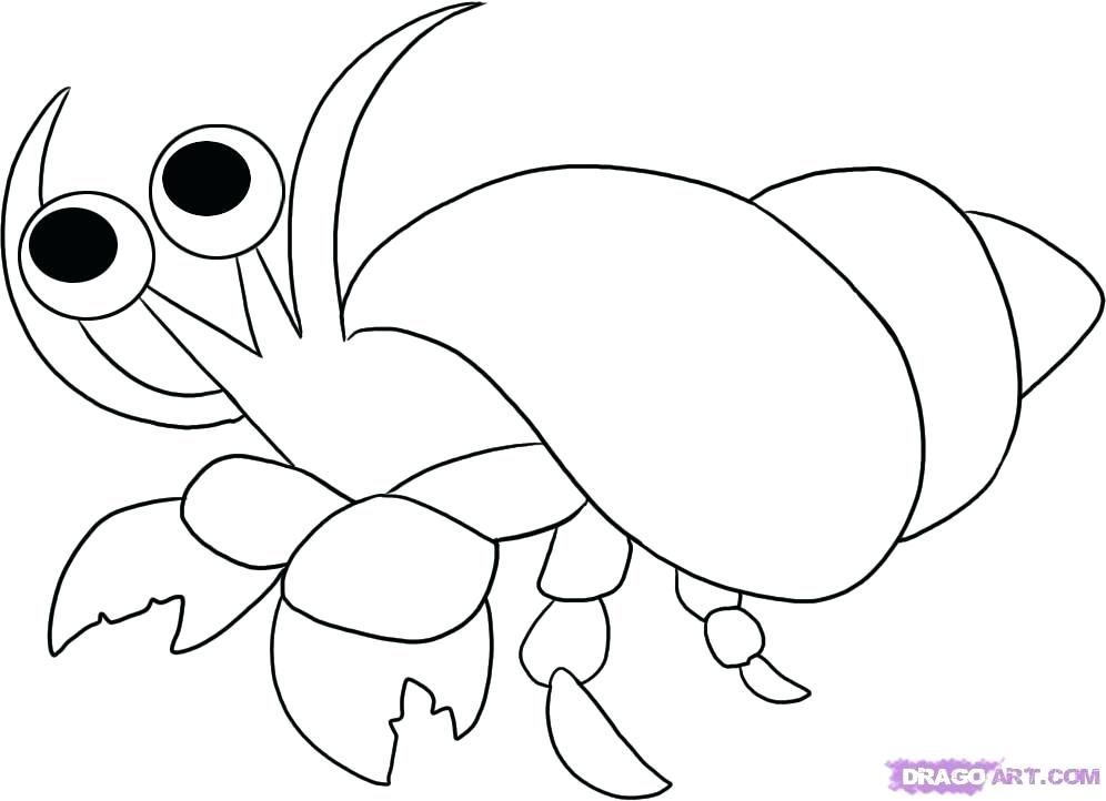 Free Crab Pictures To Print, Download Free Clip Art, Free Clip Art ... | 722x996