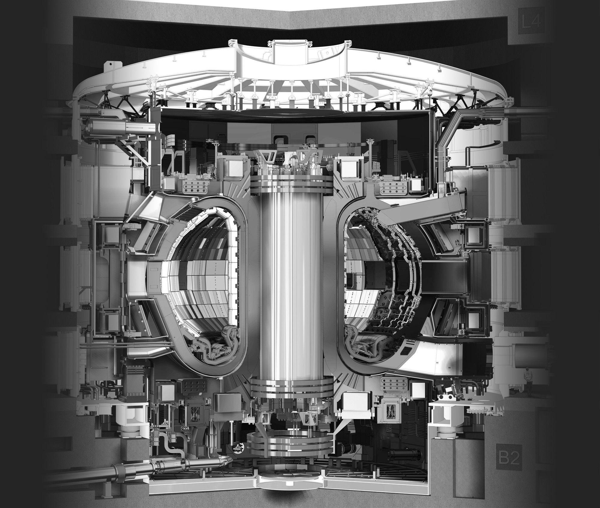 ITER: the world's largest Tokamak