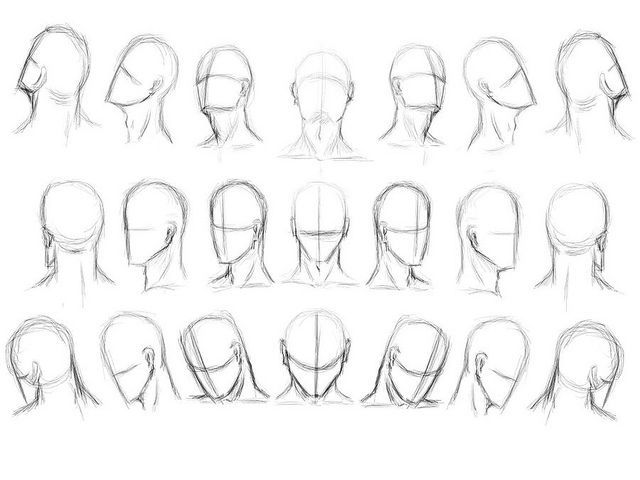 Head Tilted Up Reference Drawing The Human Head Drawing Heads Drawings