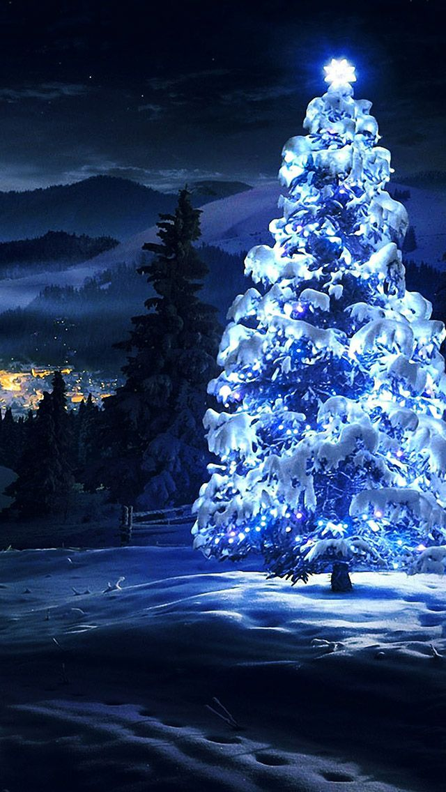 White Christmas Tree Light Iphone 5s Wallpaper Merry Christmas Winter Scenery Christmas Wallpaper Winter Photography