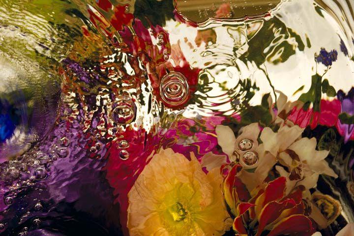 Spring Exhuberence by Elizabeth Kleinveld