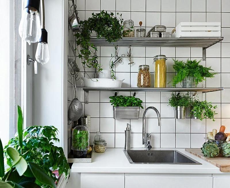 Herbes aromatiques en pot la d co maison id ale home - Maison ideale ...