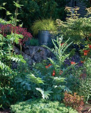 2 Ways to Design Bold Gardens | Fine Gardening