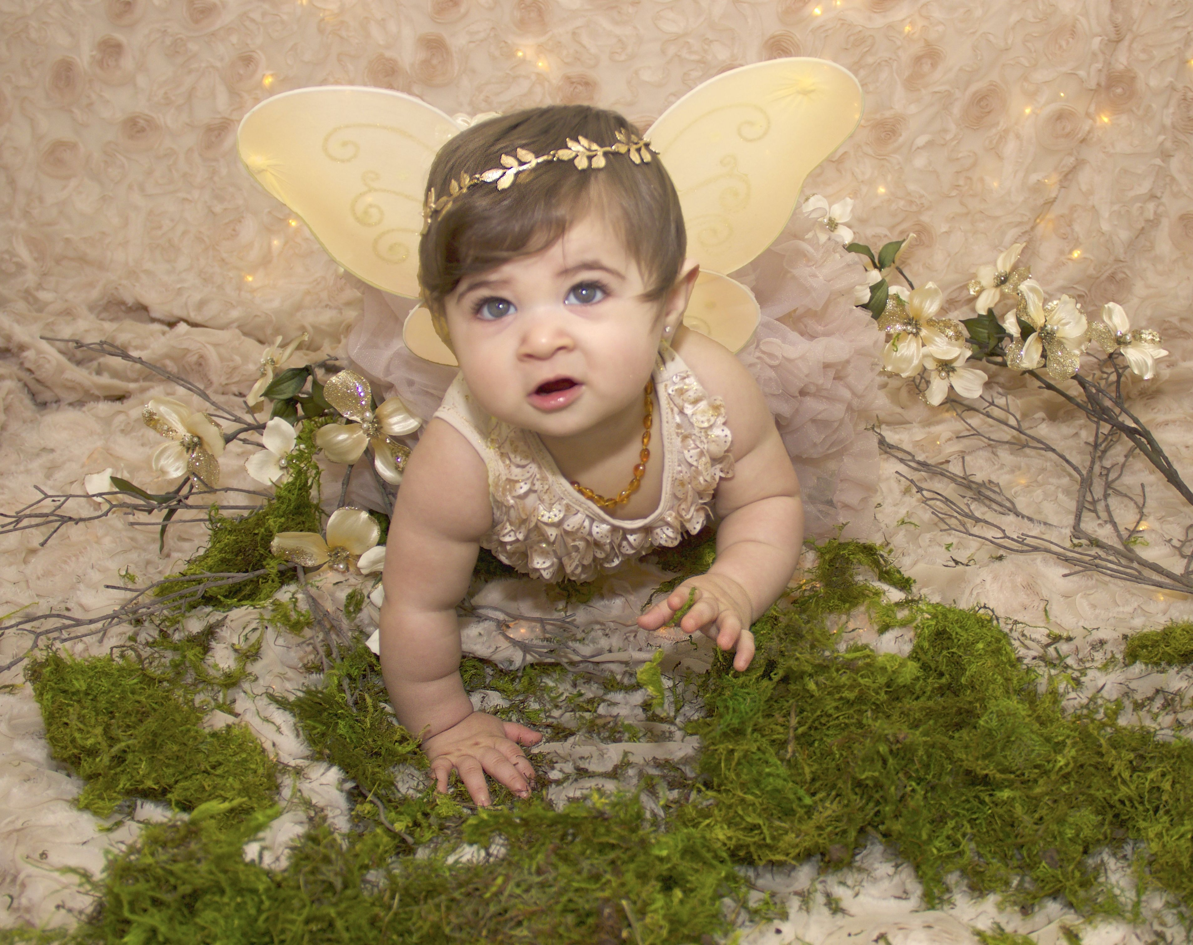 9th Photoshoot Baby Girl Pictures Fall Theme Halloween Theme Fairy Fairy Photoshoot Baby Girl Pictures Girl Photo Shoots
