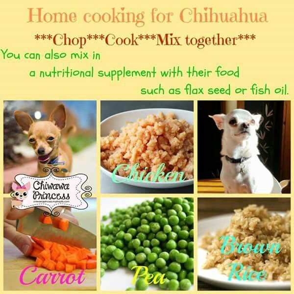 Home Cooking For Chihuahuas Food Home Cooking