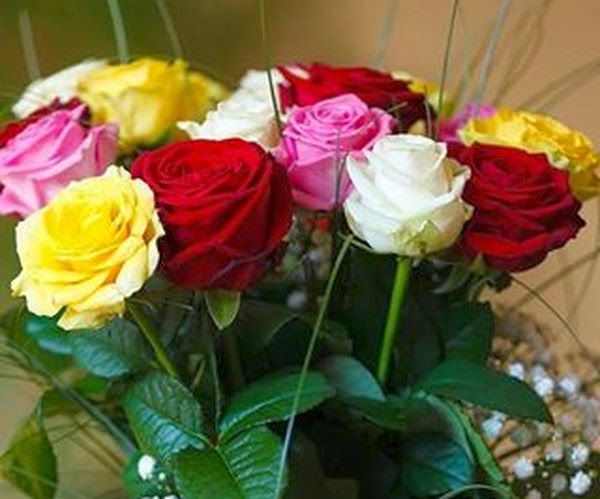 Happy Day - Share' now | Flowers. Pretty, Beautiful, Lovely flowers Everyday.. It's amazing.