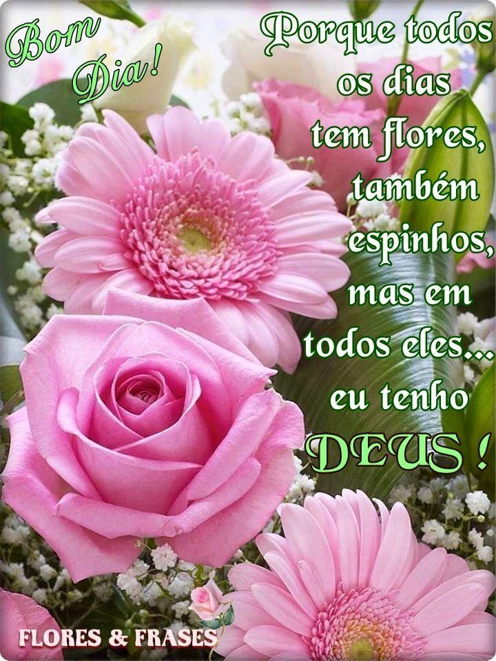 Flores E Frases Bom Dia Flores E Frases Pinterest Flowers