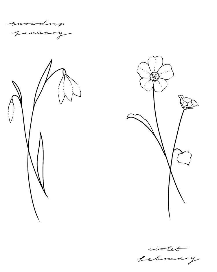 Birth Flower Flash January Snowdrop February Violet March Daffodil April Sweetpea May Li Birth Flower Tattoos Larkspur Tattoo Violet Flower Tattoos