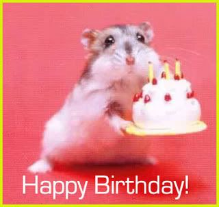 Cute happy birthday photo 13546nnp22d0851g bits pieces cute happy birthday photo 13546nnp22d0851g voltagebd Image collections
