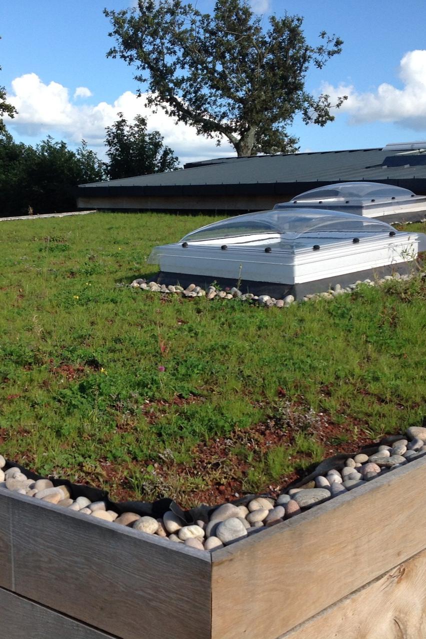 Stunning Green Roof With White Pebble Trim Grufekit Greenroof Plants Sedum Design Roof Rooftop Roofdesign Urb Green Roof Garden Green Roof Sedum Roof