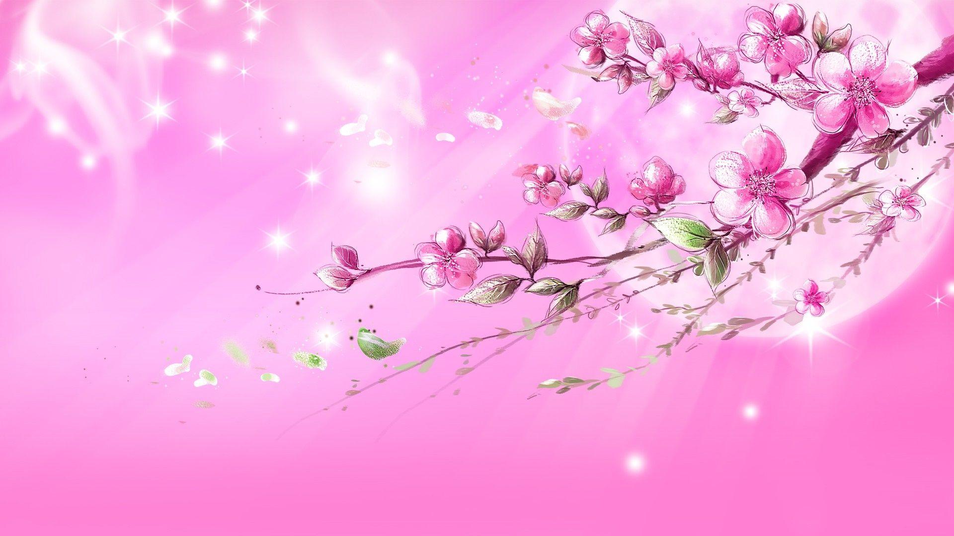 Hd Light Pink Backgrounds Pink Wallpaper Backgrounds Pink Wallpapers Pink Background Images