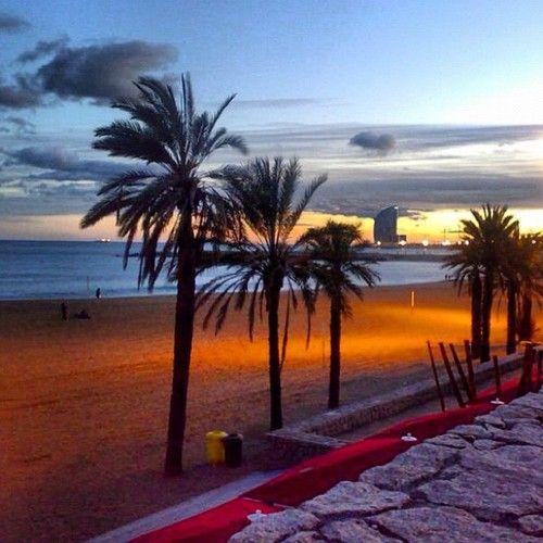 Atardecer en Barceloneta