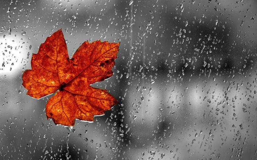 Картинки про дождь и осень с надписями, открытки для мужчин
