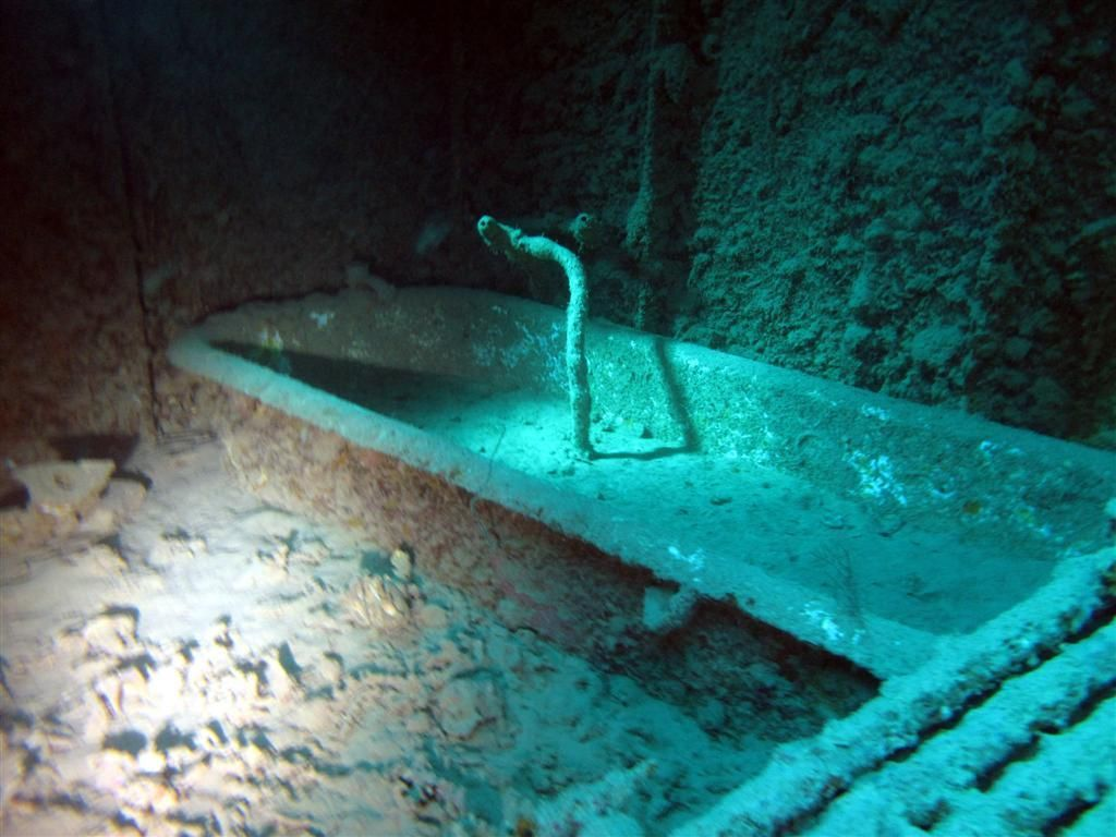 Ship Graveyard Wow >> Looking at the Captain's bathtub inside of the wrecked ship the S.S. Thistlegorm. It's been ...