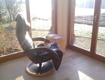 Google Sessel Relaxsessel Relaxen