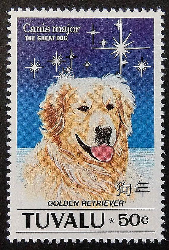 47+ Polynesian dog info