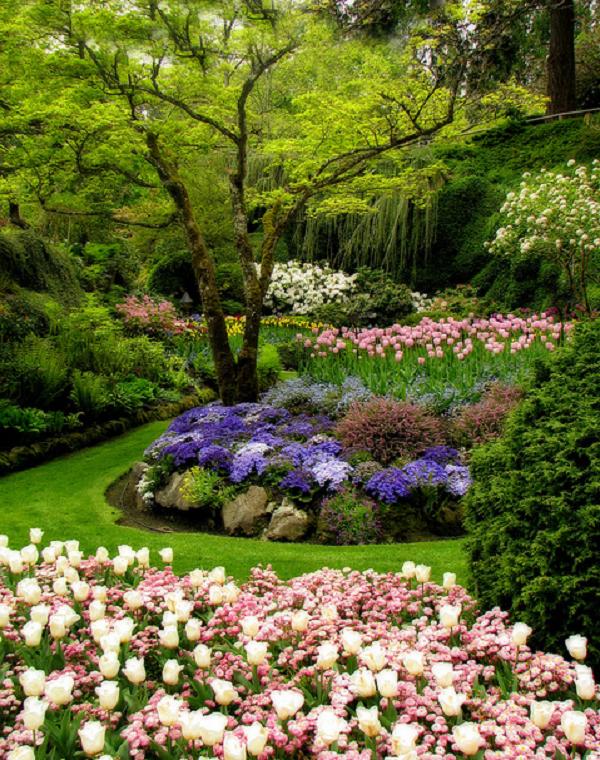 4fbede52e510200eb76bb33474fb9cb4 - Gardens By The Bay Valentine's Day
