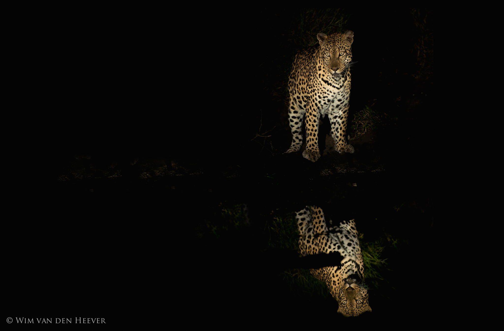 Fotografia Reflections de Wim van den Heever na 500px