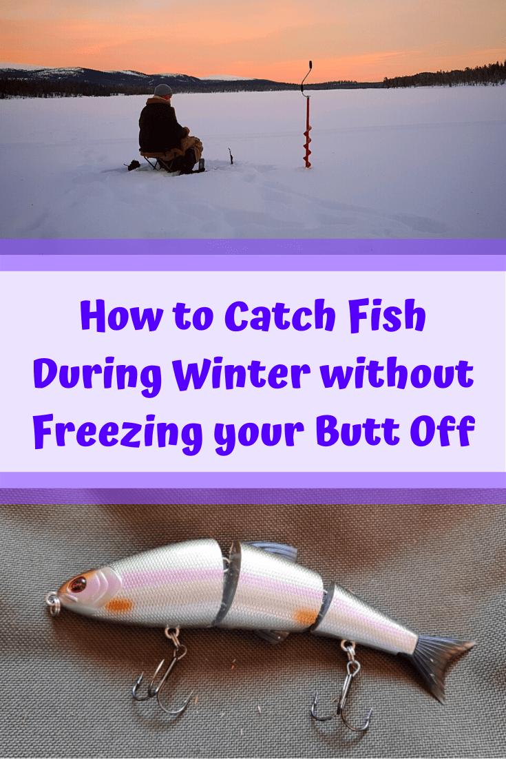 Pin auf Fishing for Beginners