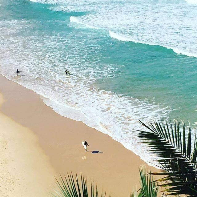 North shore beaches sydney
