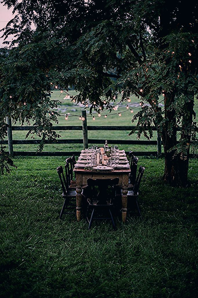 Photo of Gathering from Scratch | A Workshop Retreat in the Shenandoah Valley Part 2 – Local Milk Blog