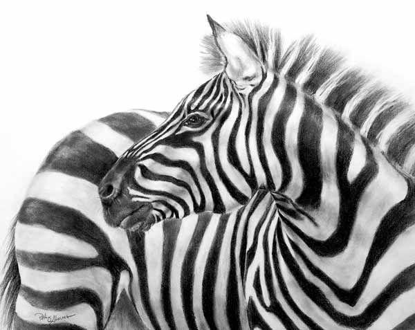 coloured pencil artists - Google Search | CREATIVE ...