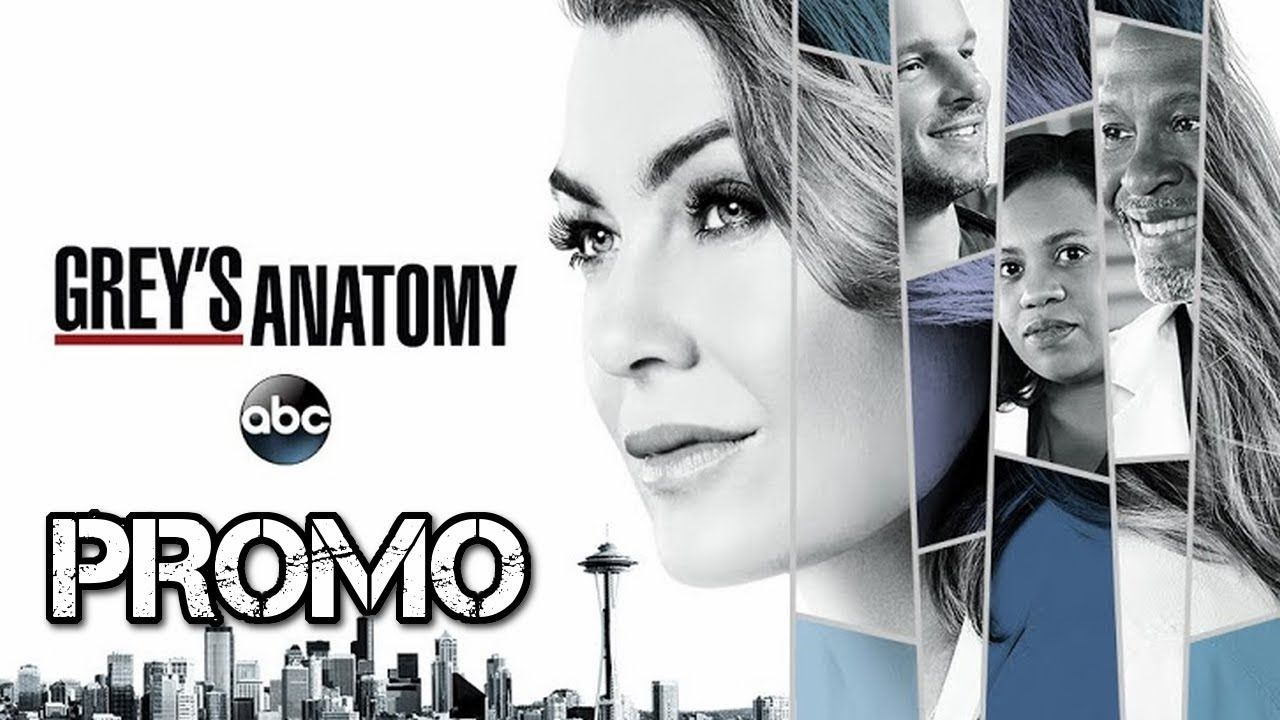 Attractive Torrent Grey Anatomy Sketch - Anatomy and Physiology ...