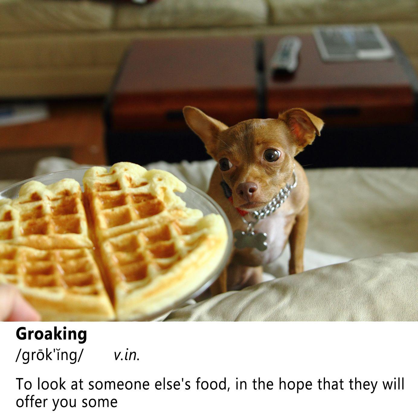 Word Of The Day Groaking Fluffy Waffles Waffles Waffle Recipes