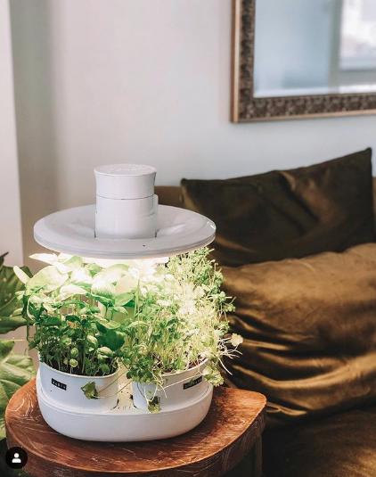 Urbipod Indoor Garden Indoor Garden Smart Garden Herb Garden Kit