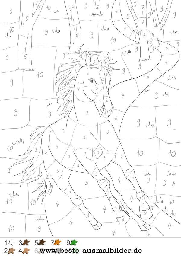Pferd im Wald - Malen nach Zahlen … | Pinteres…