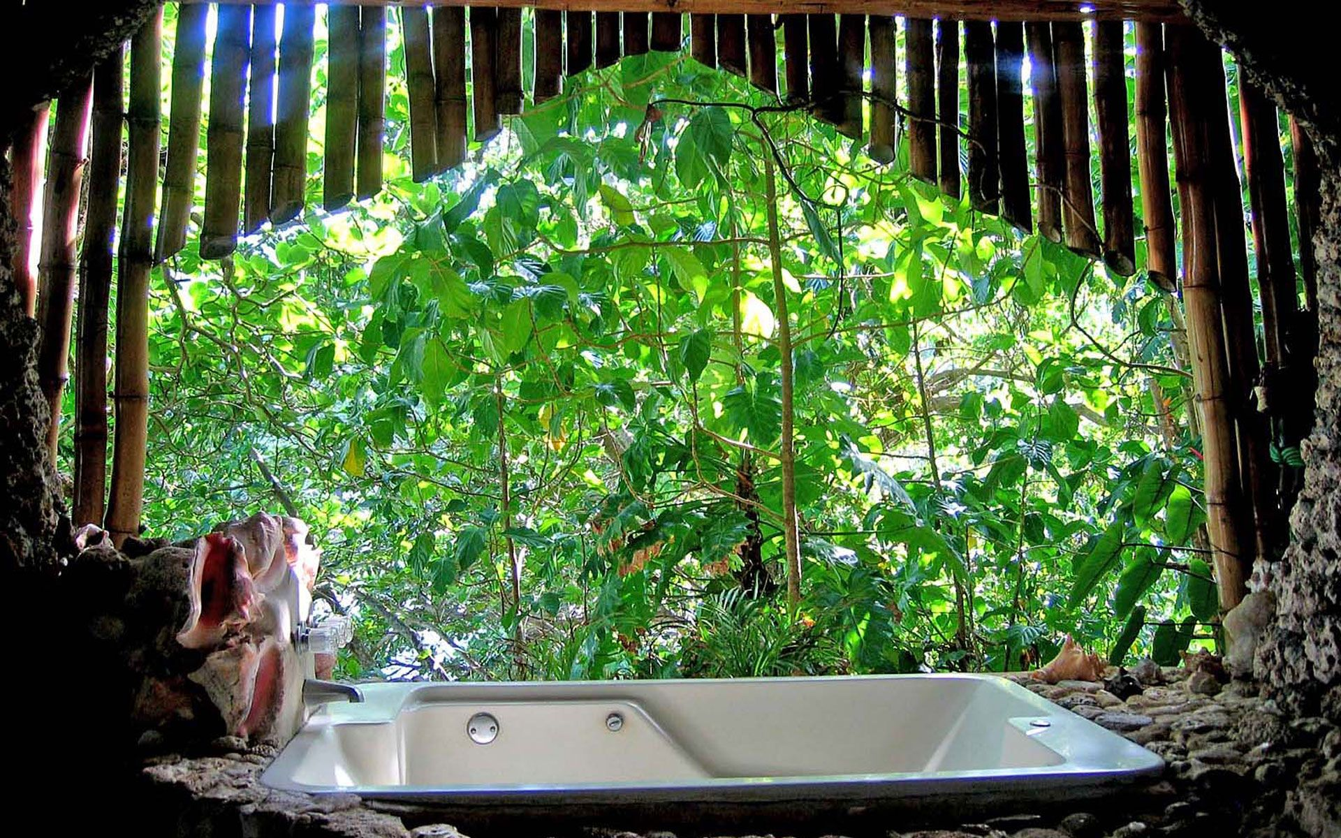 Tree House Bathroom view from the bathroom of bamboo tree house | great huts. bathroom