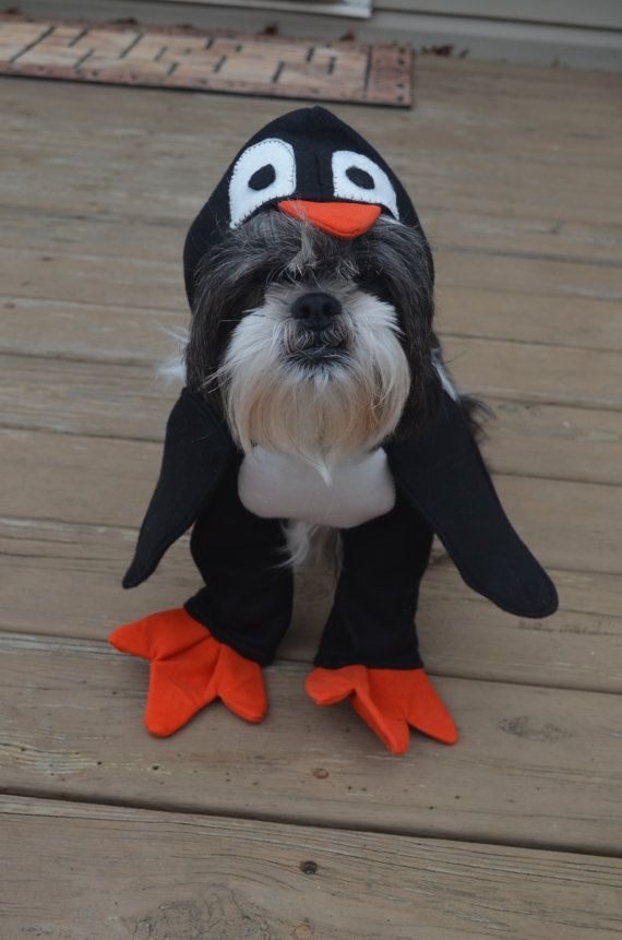 Adorable Penguin Dog Costume for small breed dogs | Great ...