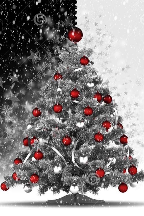 Feliz Natal Feliznatal Natal Boasfestas Jesus Espiritonatalino Color Splash Red Color Splash Photography Color Splash